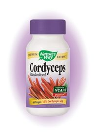Cordyceps / Кордицепс Екстракт от гъба Природен антибиотик 60капс.
