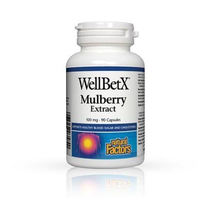 WellBetX Mulberry / Бяла черница за отслабване и намаляване на холестерола 90капс.